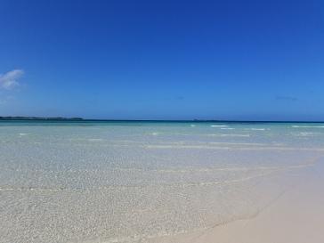 So sorry, more stunning beach photos!