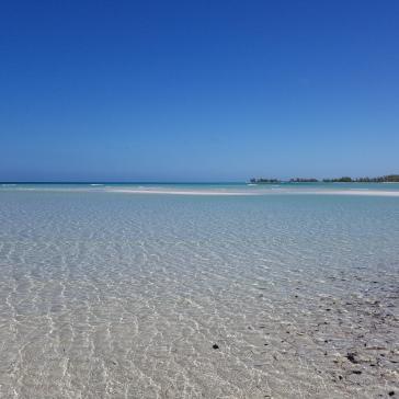 More beach scenes...
