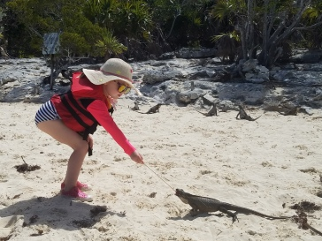 June feeding the iguanas.