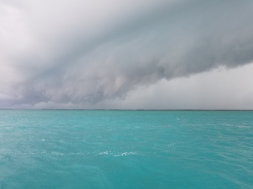 One of the storms that kept us home.